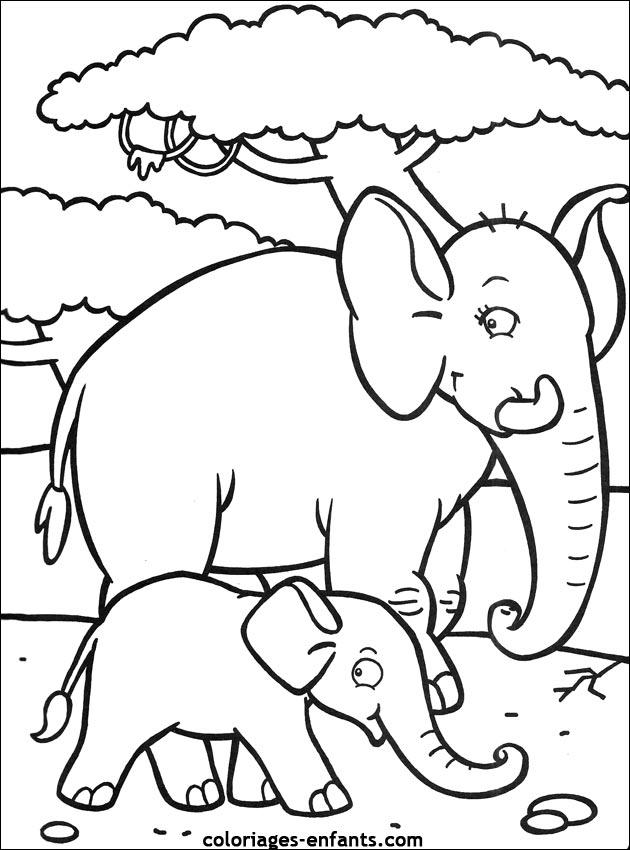 Coloriage d 39 l phants de la rubrique animaux imprimer de - Elephant a imprimer ...