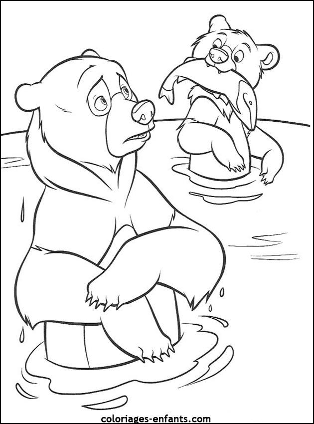 Coloriage d'ours de la rubrique animaux à imprimer de coloriages - enfants