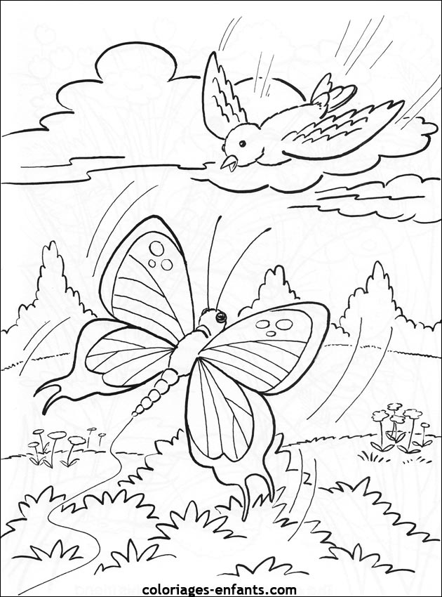 Papillons dessins - Papillon dessin a imprimer ...