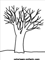 Coloriages d'arbres